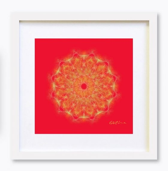 Mandala Colour Therapy Wall Art BrightNightLight WA5001